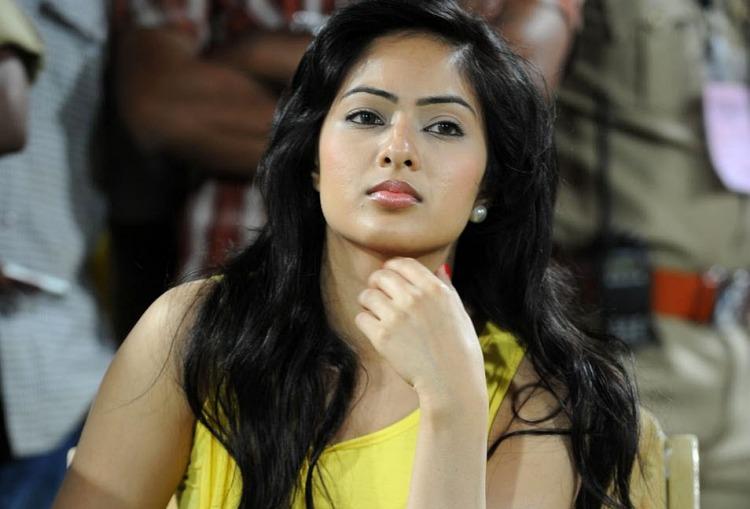 Nikesha Patel Salary, Net worth and Remuneration