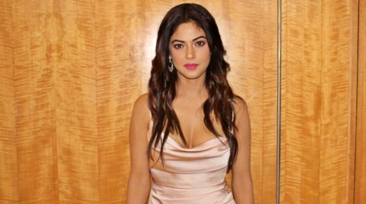 Meera Chopra Favourite Film, Actor and Actress