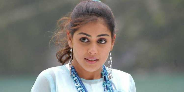 Genelia D'souza Wiki Bio Age Husband Salary Photos Videos Ig Fb Tw